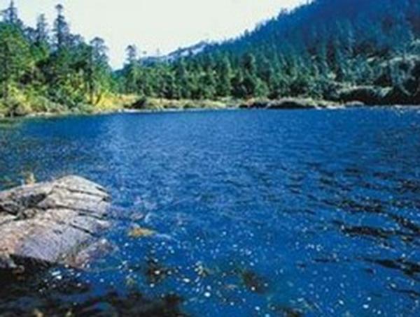 地表水检测
