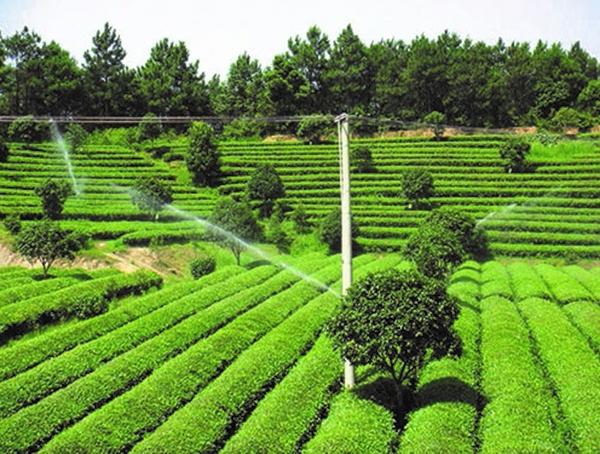 农田灌溉水